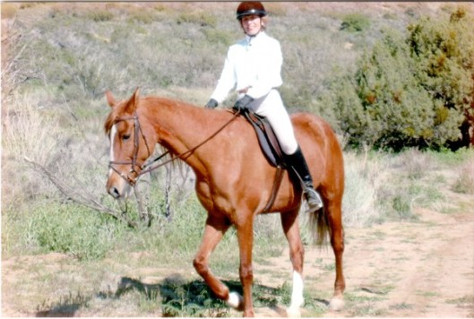 Prim, my fraidy-cat trail horse.  In 22 years she has only dumped me once, and it was my fault.  Not hers.